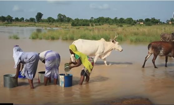 WOFUGUMANI RESIDENTS TO GET SAFE DRINKING WATER AFTER YEARS OF COMPETING WITH ANIMALS FOR WATER
